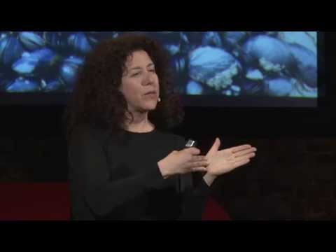 Designed with the earth in mind | Beth Rattner | TEDxSacramentoSalon