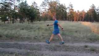 Видеоурок Скандинавская ходьба (Nordic Walking).
