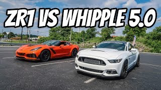 2019 ZR1 vs. Whipple Supercharged Coyote Mustang Ft. Streetspeed717