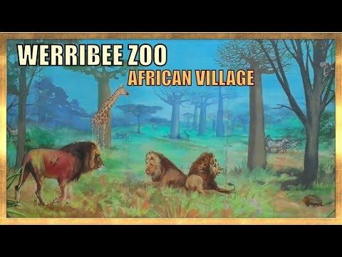 WERRIBEE ZOO AFRICAN VILLAGE  - 4K - MELBOURNE 2019