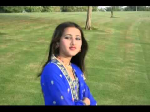 Dil Raj Pashto New Song Laliaa Pregda Da Arabo