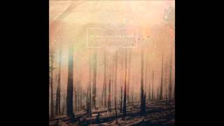 If These Trees Could Talk - The First Fire