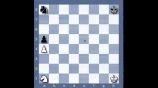 The Real Beginner's Guide to Chess #15