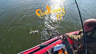 Хорошая русловая щука взяла рыбалка на спиннинг осенью