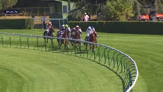 Vidéo de la course PMU PRIX DES TOURELLES