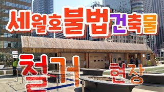 붋법 무허가 세월호 천막 철거 현장 서울 광화문 광장입…