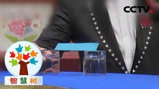 《智慧树》绿泡泡大魔术师展示纸上的魔法 20200728 | CCTV少儿 - YouTube