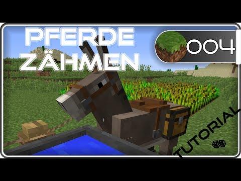 🌟 Minecraft Pferde Zähmen - Und Reiten   Wiki   Tutorial #4   Deutsch   CLM