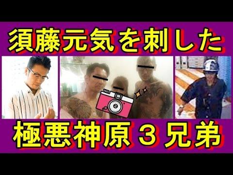 須藤元気刺される】関東連合が入団拒否した最強神原3兄弟 ...
