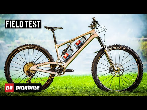 Palin Bearing Pedals /& Kickstand Mountain Bike MTB Foldable Foot Support Stand