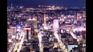 「氷雨慕情」      唄 / 米澤秀和  Japanese enka  song