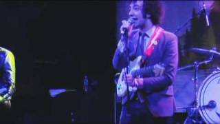 Albert Hammond Jr -Everyone Gets A Star