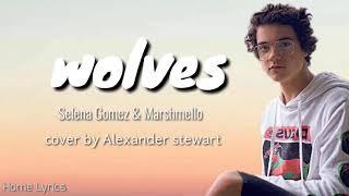 Wolves  cover by Alexander Stewart ( lirik dan terjemahannya )