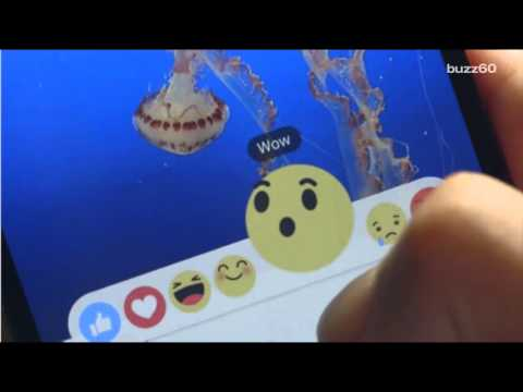 Facebook's new dislike button is actually 6 emojis called Reactions