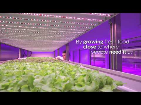 Taste the new green - Philips GrowWise, the Netherlands (English subtitles)