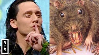 Avengers Endgame: The Rat Was The True Hero