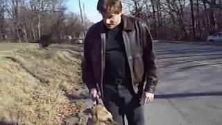 Dog Training - Taking back the Walk - part 2
