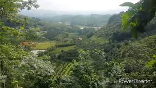 Cảnh núi rừng quê tôi thật là bao la bát ngát màu xanh của cây và lá vẻ đẹp.