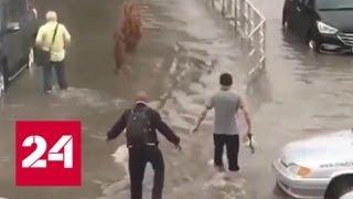 Ливень превратил в реки улицы Анапы - Россия 24