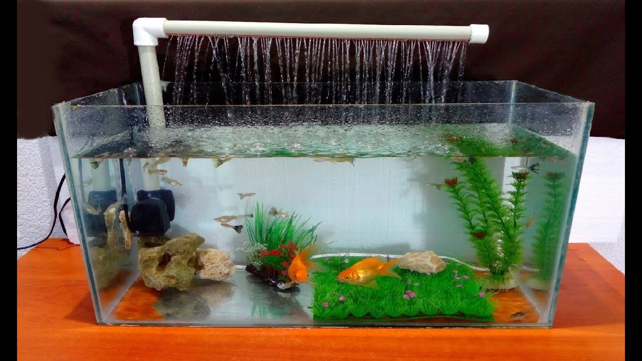How To Make An Aquarium Fountain Using A Pvc Pipe Diy Youtube