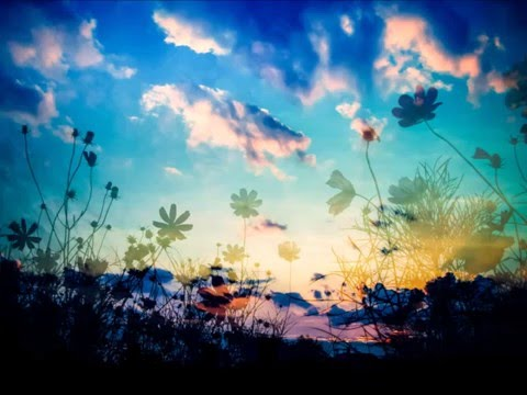 royalty free  background music 【sad nostalgic happy 】「Under a night sky sg.ver」