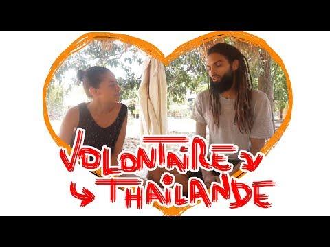 👉 Etre Volontaire dans un centre de Méditation/Bouddhisme/Yoga/Permaculture en Thailande  👈