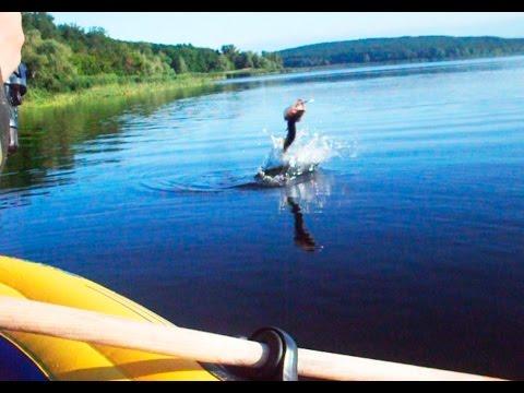 ловля щуки на краснооскольском водохранилище