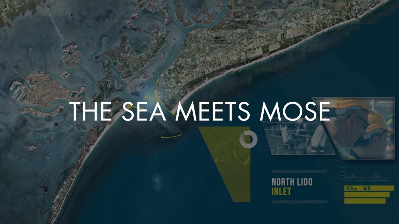 THE SEA MEETS MOSE