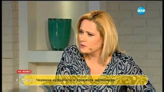 Иво Недялков – Фараона: между пирамидите и офшорките - Комбина (10.04.2016)