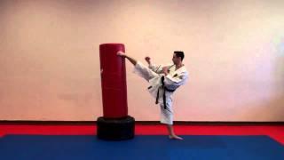 Spinning Wheel Kick - Warren Levi Karate