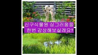 (송인섭 여행) 신구식물원 : 싱그러움을 맛보실레요?