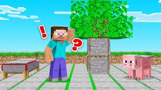 Everything In MINECRAFT CURSES / BLESSES YOU! (pressure plates)