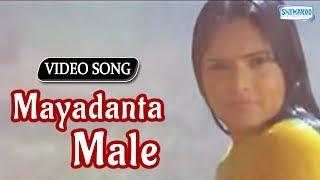 Mayadanta Male - Divya Spadana - Sevanthi Sevanthi - Best Kannada Songs