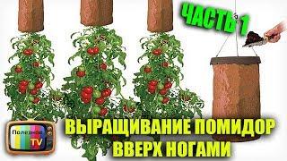 видео Выращивание раннего урожая томатов