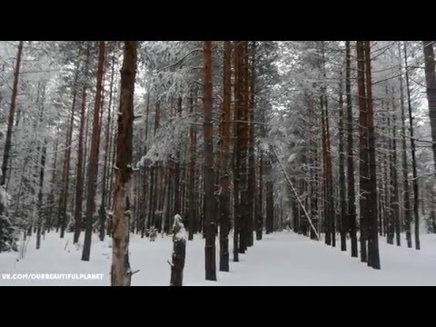 Зима в Деулино (Рязанская область), съемка Рязанской природы