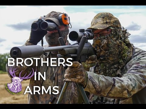 BROTHERS IN ARMS | THE MALFORMED ROEBUCK