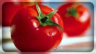 видео Ранние томаты