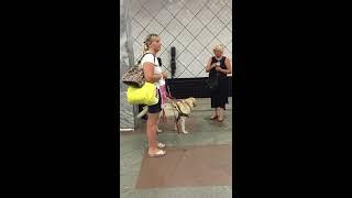 Видео, снятое на телефон Виктории Павленко 29.07.2015 на станции метро Профсоюзная(, 2015-11-18T13:17:52.000Z)