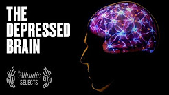 Your Brain on Depression: Neuroscience, Animated