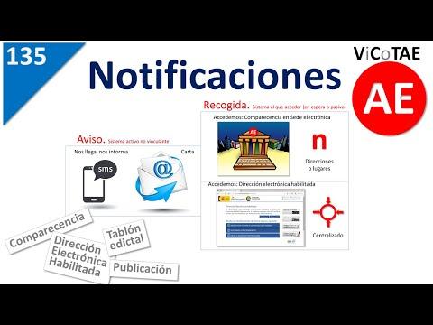 135-notificaciones-electrónicas