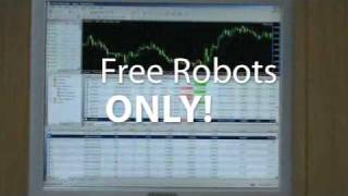 RitaLaskersRobot.mp4