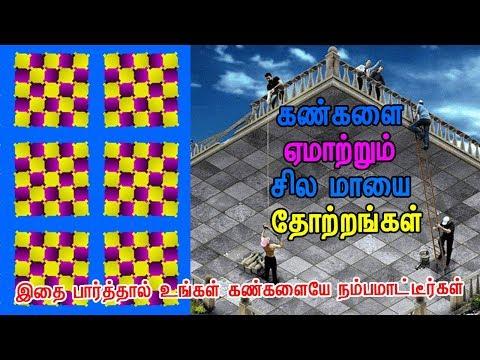 Optical Illusions in Tamil | Brain Games in Tamil