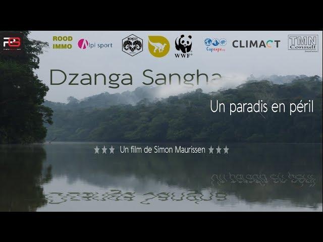 'Dzanga Sangha,  un paradis en péril' 2016 - VF