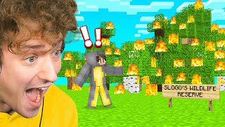 BURNED DOWN My FRIENDS Minecraft FOREST! (New Cow Town)