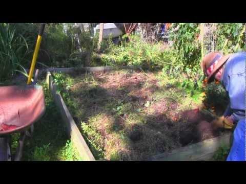 Marvin's Garden 2012 - October