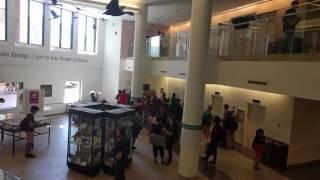 Black Lives Matter Invades UW Library