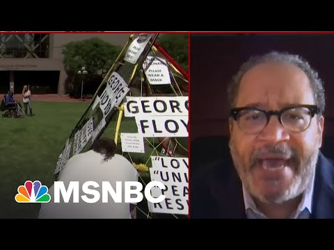 After Chauvin's Sentencing, People 'Should Feel Torn': Michael Eric Dyson