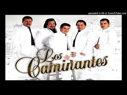 Cantina Mix - Los Caminantes ( Audio Official )