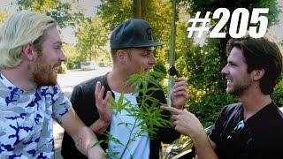 #205: Wietplanten Kopen [OPDRACHT]