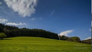 263 Time Lapse Black Forest  Edge of the Forest Meadow | Zeitraffer Schwarzwald Waldrand Wiese 4K